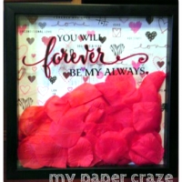 Valentine's Day Shadow Box