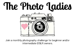 The Photo Ladies - a monthly photography challenge